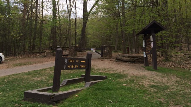 63-Year-Old Man Falls, Hits Tree at Talcott Mountain