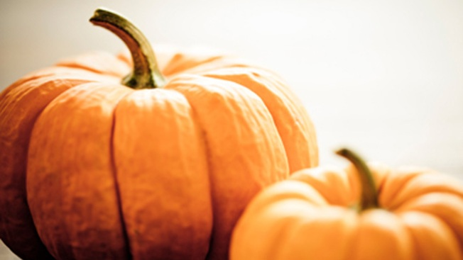 New Hampshire City Stepping Up to Host This Year's Pumpkin Festival