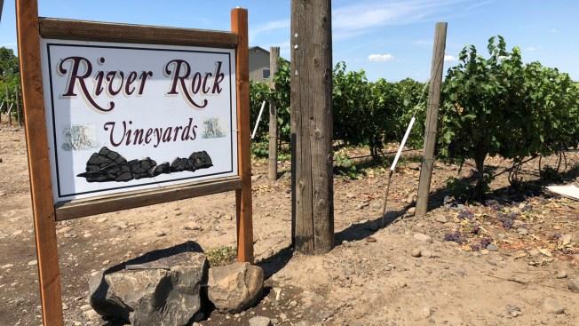 Like Wine From France's Rhone Valley? Head to Walla Walla
