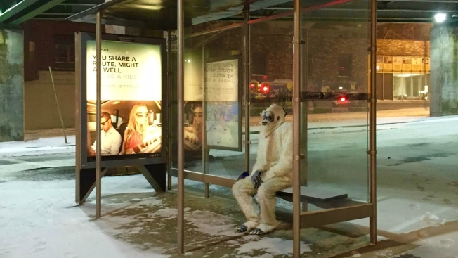 How Did the Boston Yeti Spend the Blizzard?