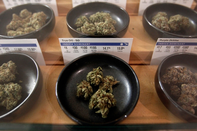 Maine Federal Prosecutor Says Marijuana Users Are Not a Priority