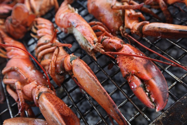 Maine Senators Propose National Lobster Day