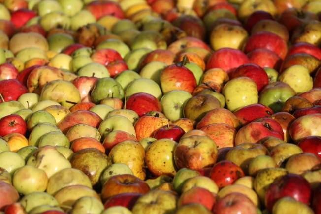 Potential Listeria Contamination Leads to Apples Recall