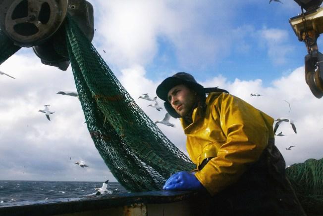 New England's Cod Fishing Cutbacks Take Effect