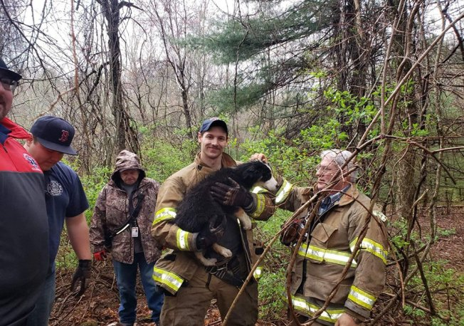 Firefighters Rescue Puppy in Well in South Killingly
