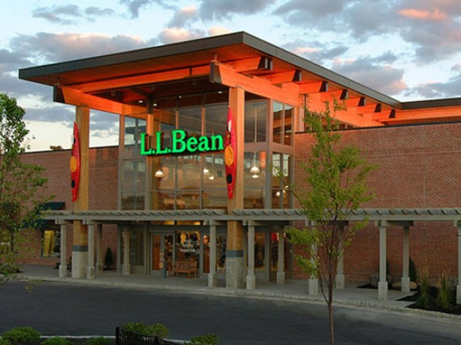 Owl Attacks Hawk in Vermont LL Bean Store Display