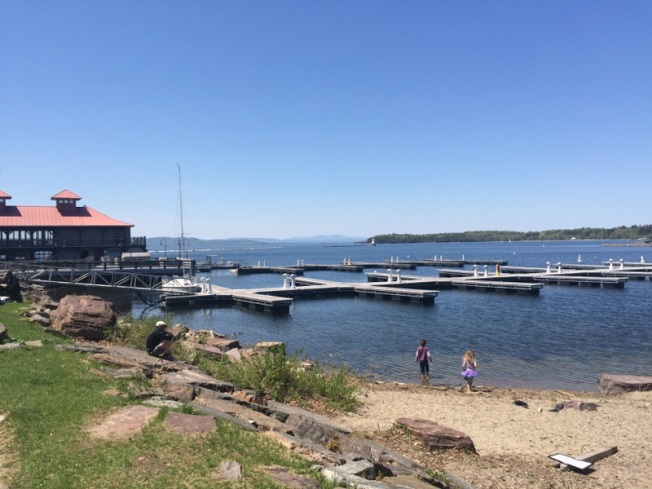 Vermont Volunteers Clean Up Lake Champlain Beaches for Nesting Turtles