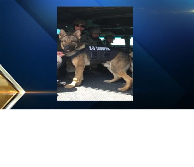 RI State Police Dog Gets Protective Vest
