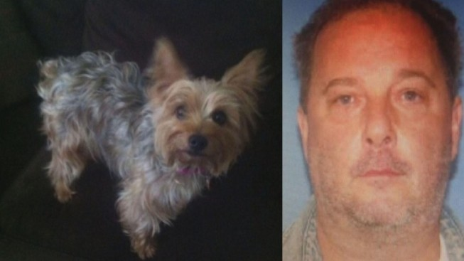 Rhode Island Man Found Guilty of Killing Small Dog