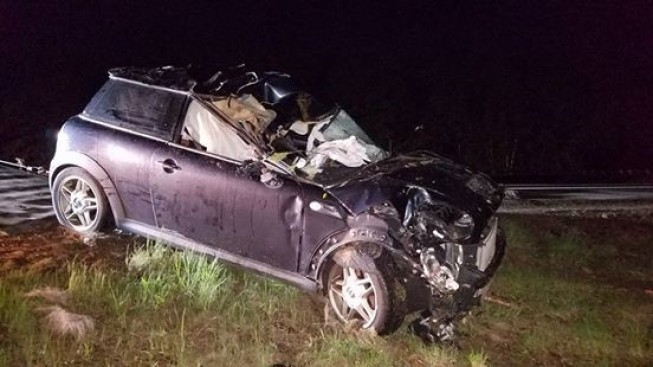 2 Injured After Car Crashes into Moose on New Hampshire Road