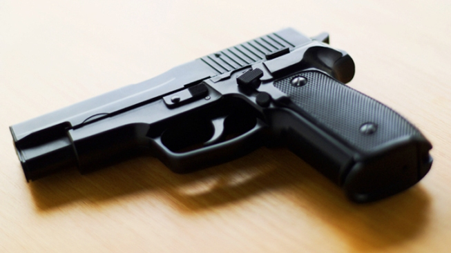 RI House OKs Domestic Violence Gun Control Bill