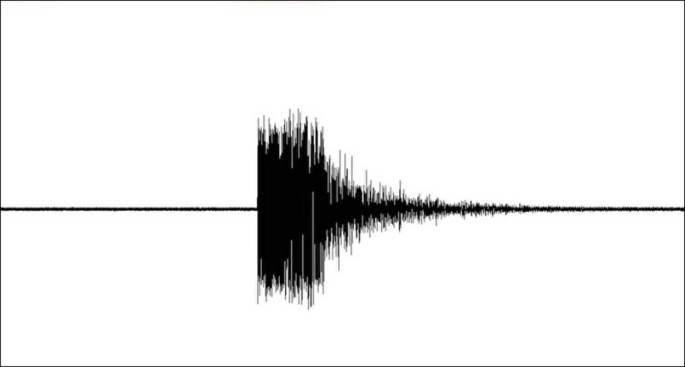 2.2 Earthquake Hits Bedford, New Hampshire