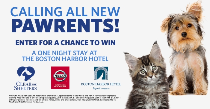 New Pawrent Sweepstakes: Win a 1-Night Stay at the Boston Harbor Hotel!