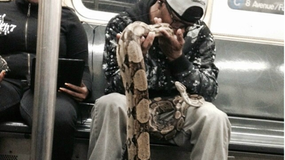 PHOTO: Man Plays With 2 Snakes on NYC Subway